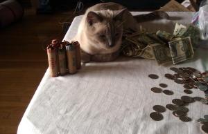 Mocha loves money