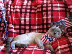 Mocha celebrates USA