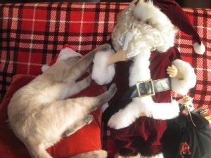 Santa outtake Mocha